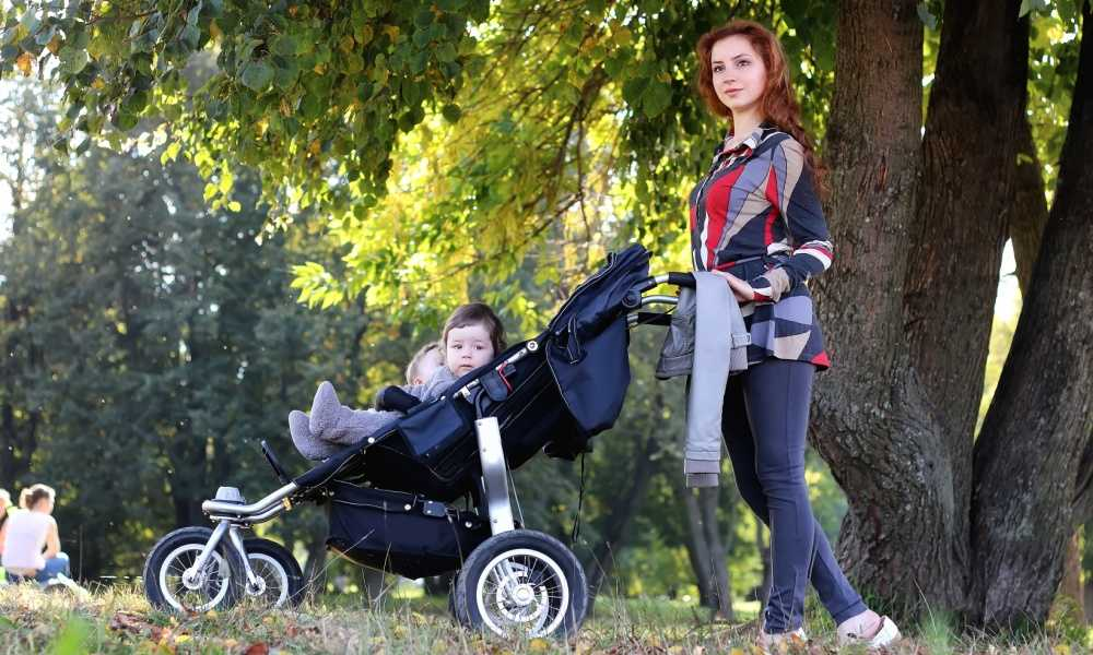 Best Jogging Stroller Of 2018 Complete Reviews With Comparison